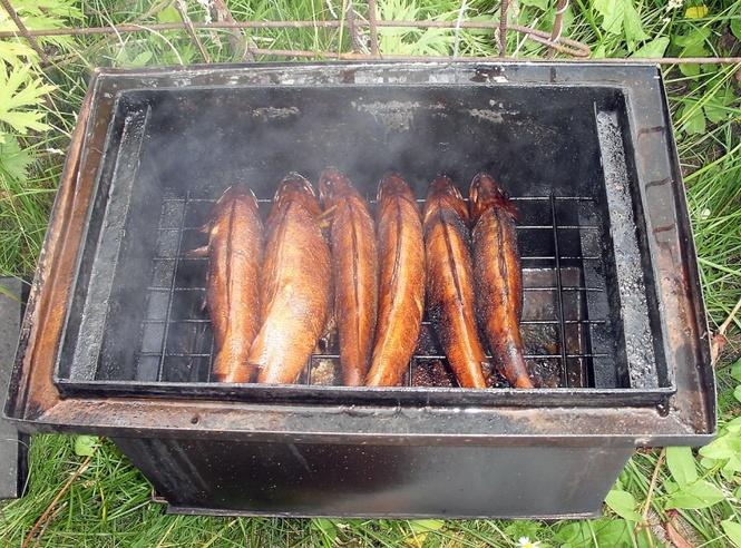 Коптильня для холодного копчения для рыбы