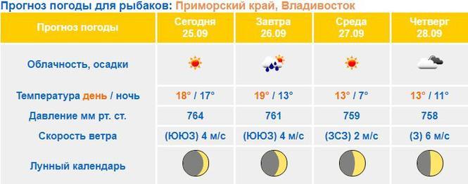 термобелье пагода диля завтра на владивасток термобелье